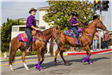 284 Soroptimist Horses in Parade 2 - Photo by Marin Stuart