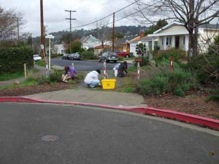 Photo of Behrens / Spokane Neighborhood 2010 Native Garden