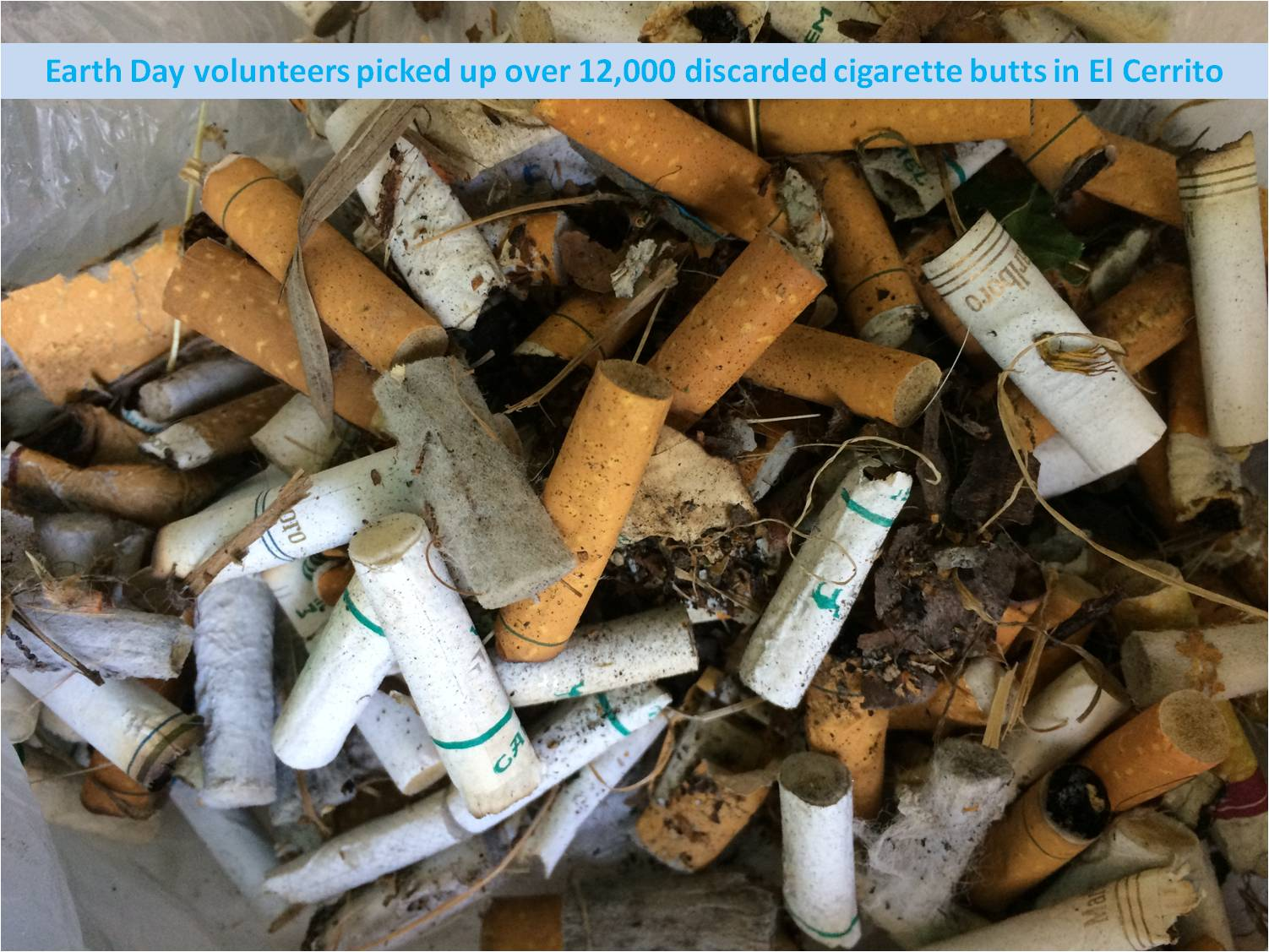 15 ECearthday cigarette butts
